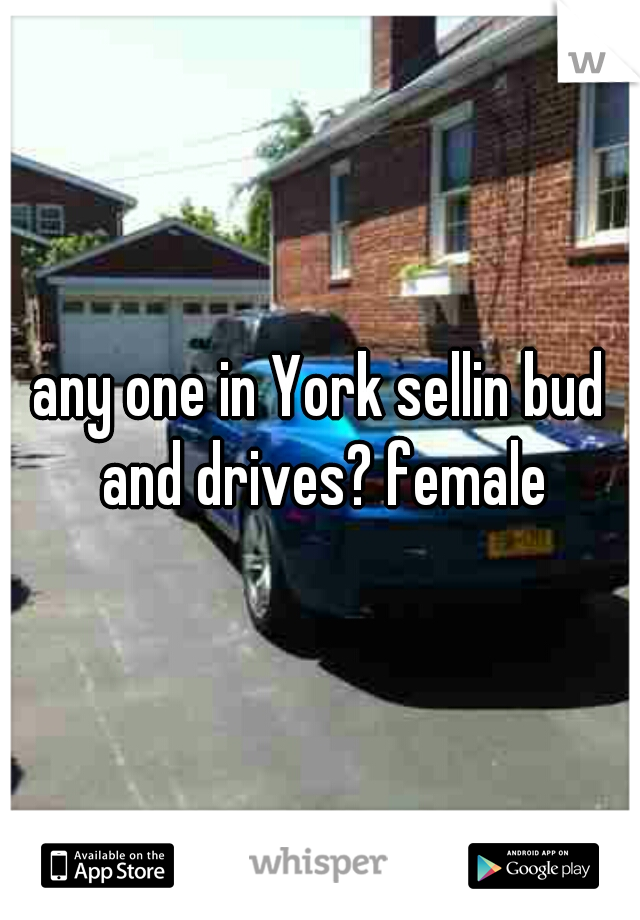 any one in York sellin bud and drives? female