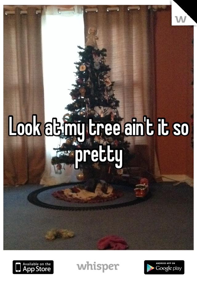 Look at my tree ain't it so pretty