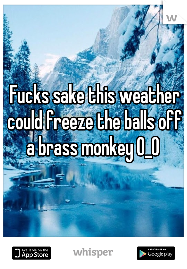 Fucks sake this weather could freeze the balls off a brass monkey O_O