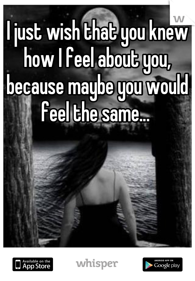 I just wish that you knew how I feel about you, because maybe you would feel the same...