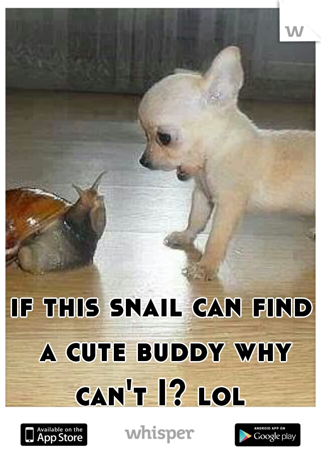 if this snail can find a cute buddy why can't I? lol