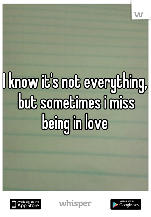 I know it's not everything, but sometimes i miss being in love