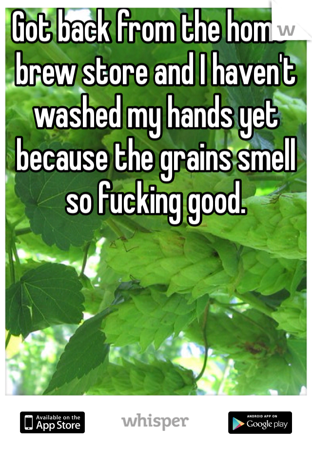 Got back from the home-brew store and I haven't washed my hands yet because the grains smell so fucking good.