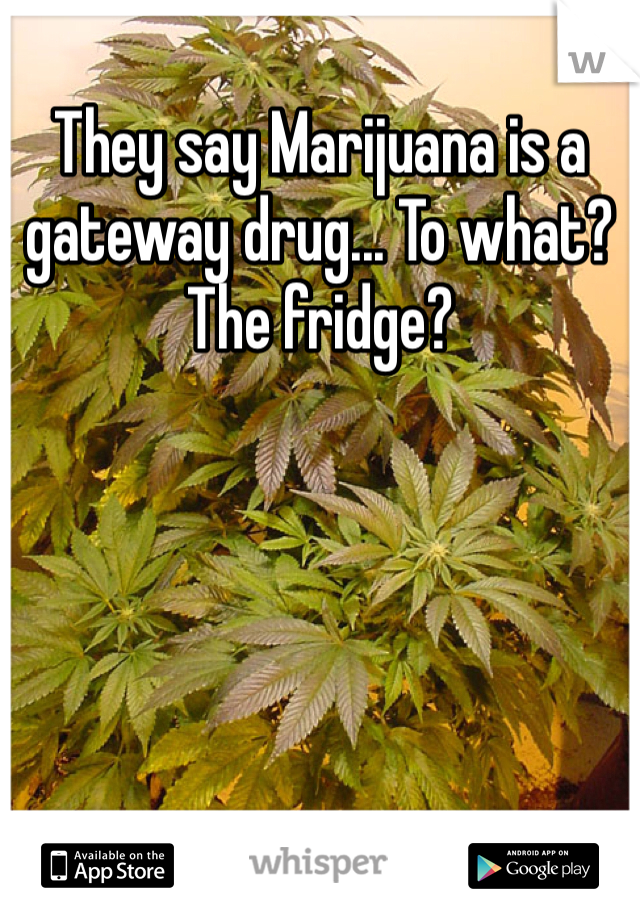 They say Marijuana is a gateway drug... To what? The fridge?