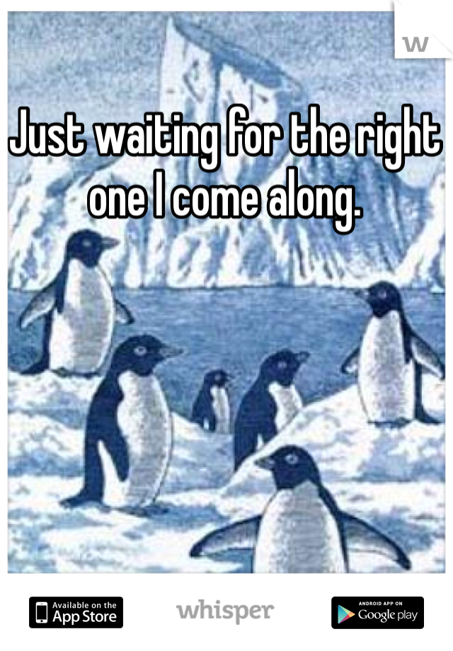 Just waiting for the right one I come along.