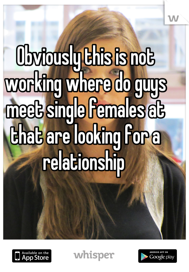 Obviously this is not working where do guys meet single females at that are looking for a relationship