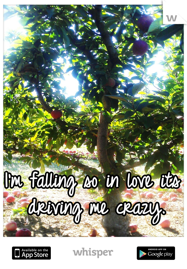 I'm falling so in love its driving me crazy.