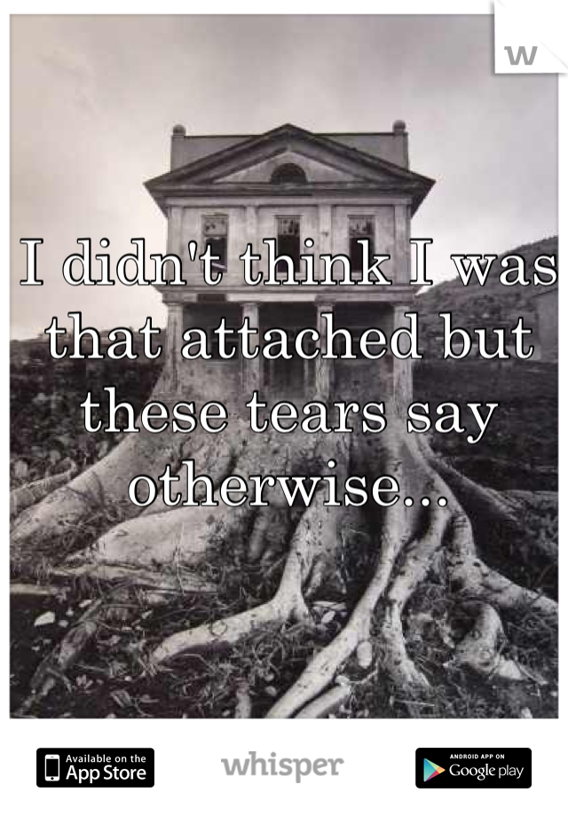I didn't think I was that attached but these tears say otherwise...