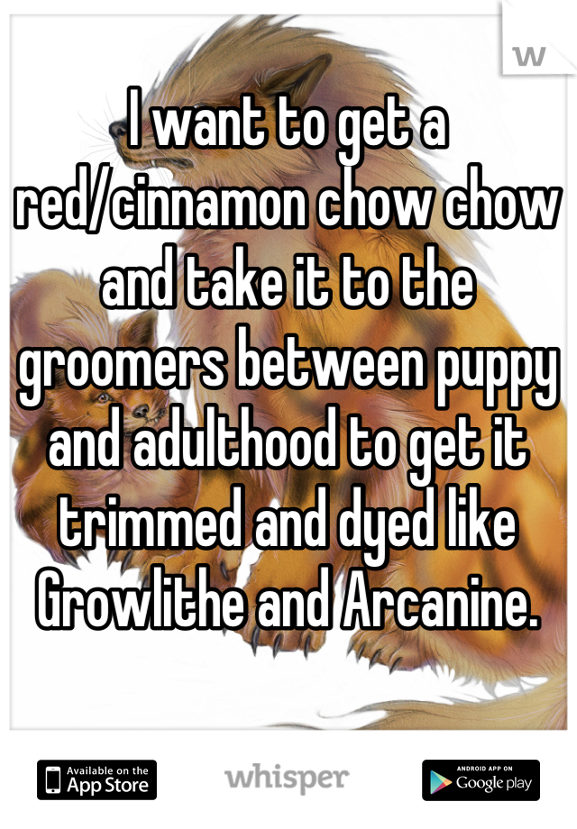 I want to get a red/cinnamon chow chow and take it to the groomers between puppy and adulthood to get it trimmed and dyed like Growlithe and Arcanine.