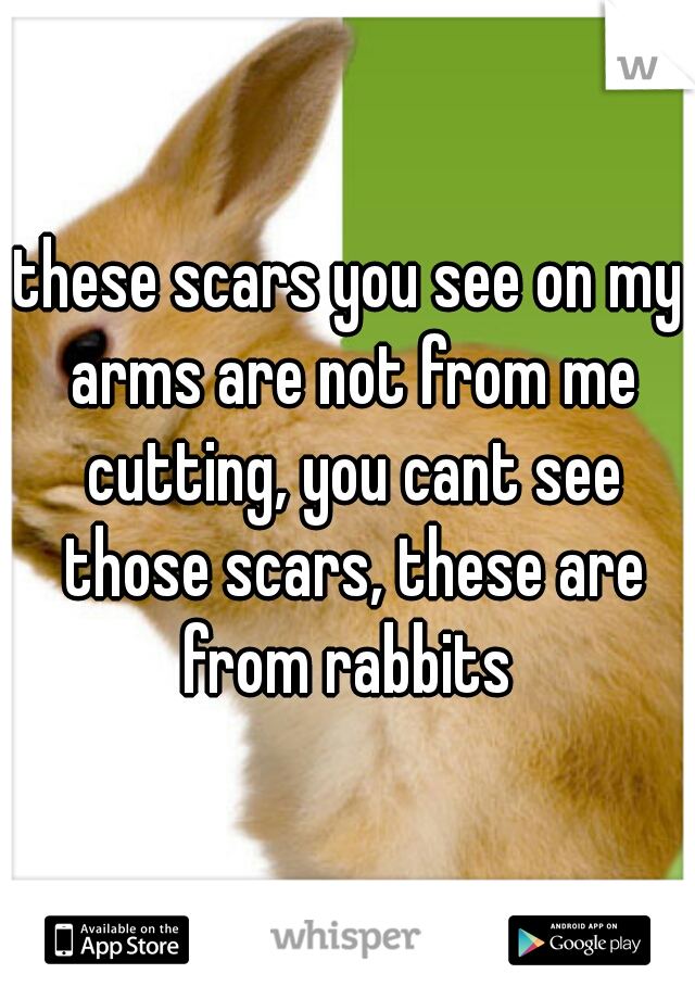 these scars you see on my arms are not from me cutting, you cant see those scars, these are from rabbits