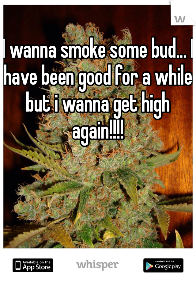 I wanna smoke some bud... I have been good for a while but i wanna get high again!!!!