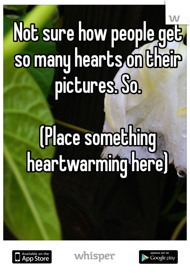 Not sure how people get so many hearts on their pictures. So.   (Place something heartwarming here)