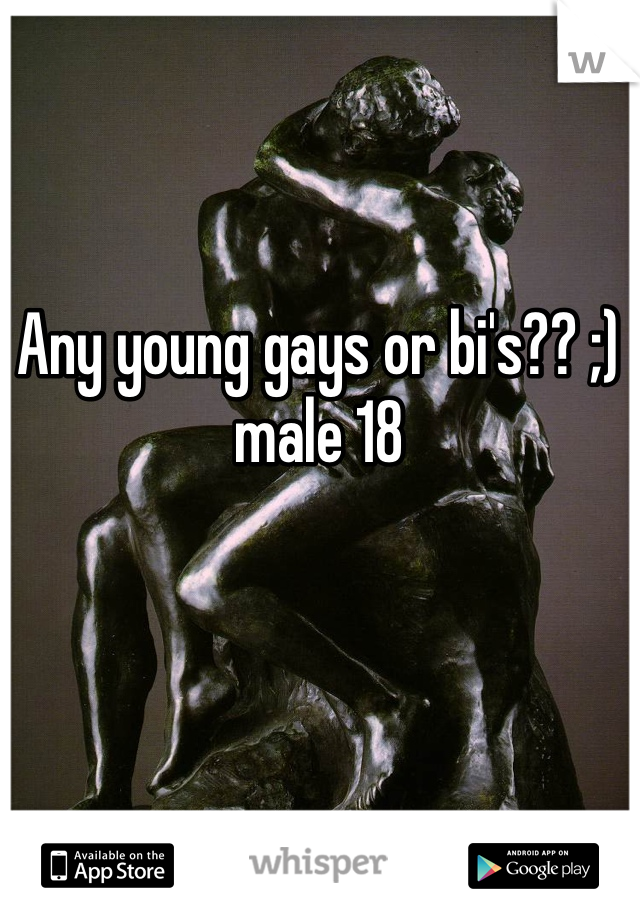 Any young gays or bi's?? ;) male 18