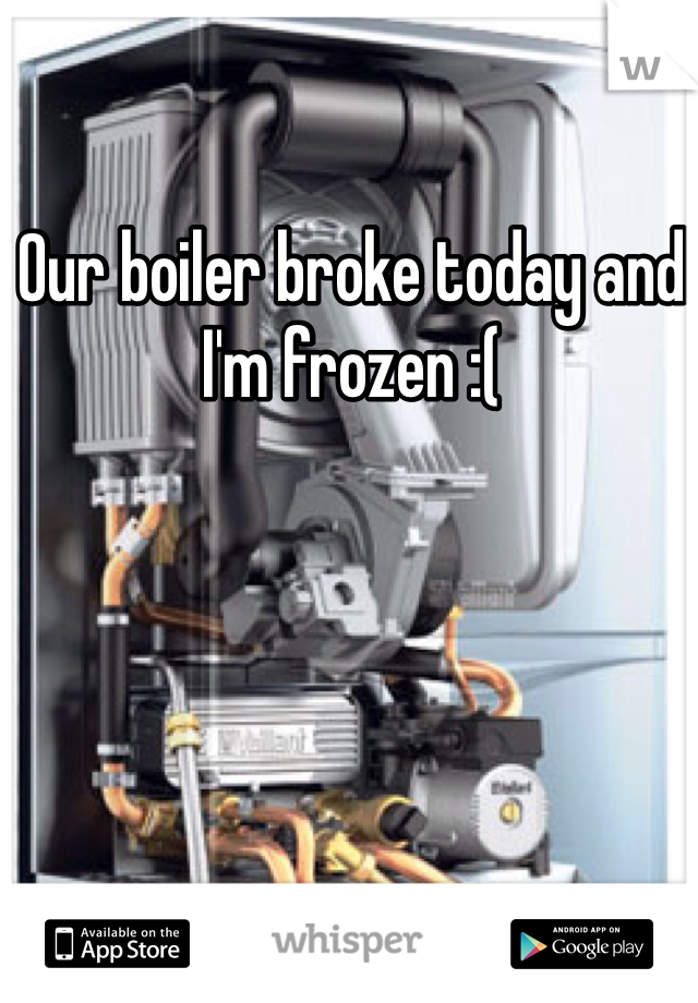 Our boiler broke today and I'm frozen :(