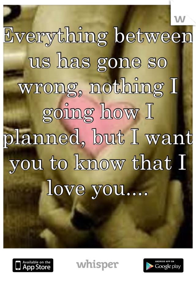 Everything between us has gone so wrong, nothing I going how I planned, but I want you to know that I love you....
