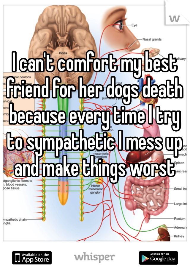 I can't comfort my best friend for her dogs death because every time I try to sympathetic I mess up and make things worst