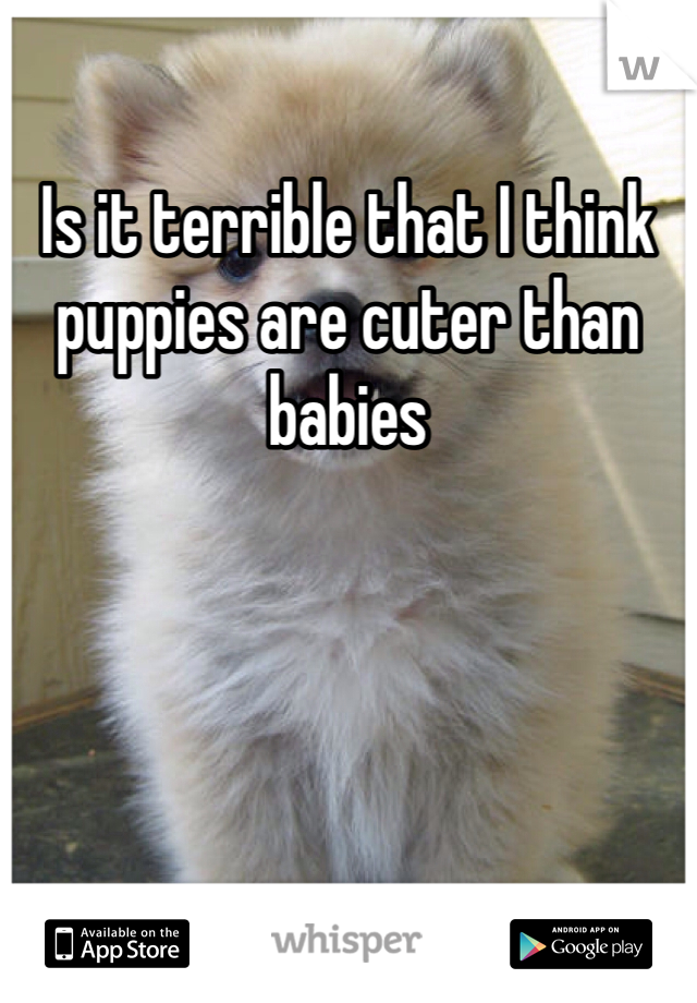 Is it terrible that I think puppies are cuter than babies