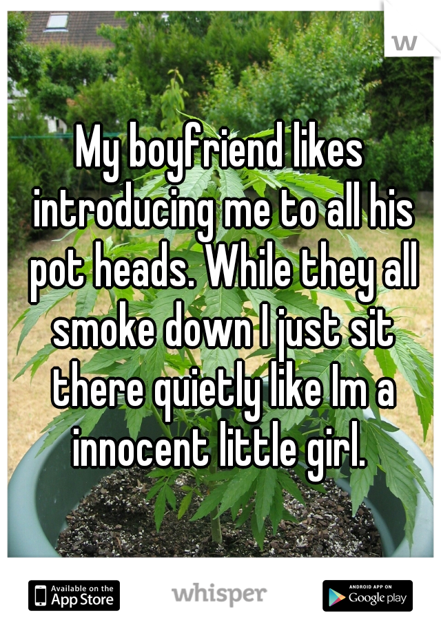 My boyfriend likes introducing me to all his pot heads. While they all smoke down I just sit there quietly like Im a innocent little girl.