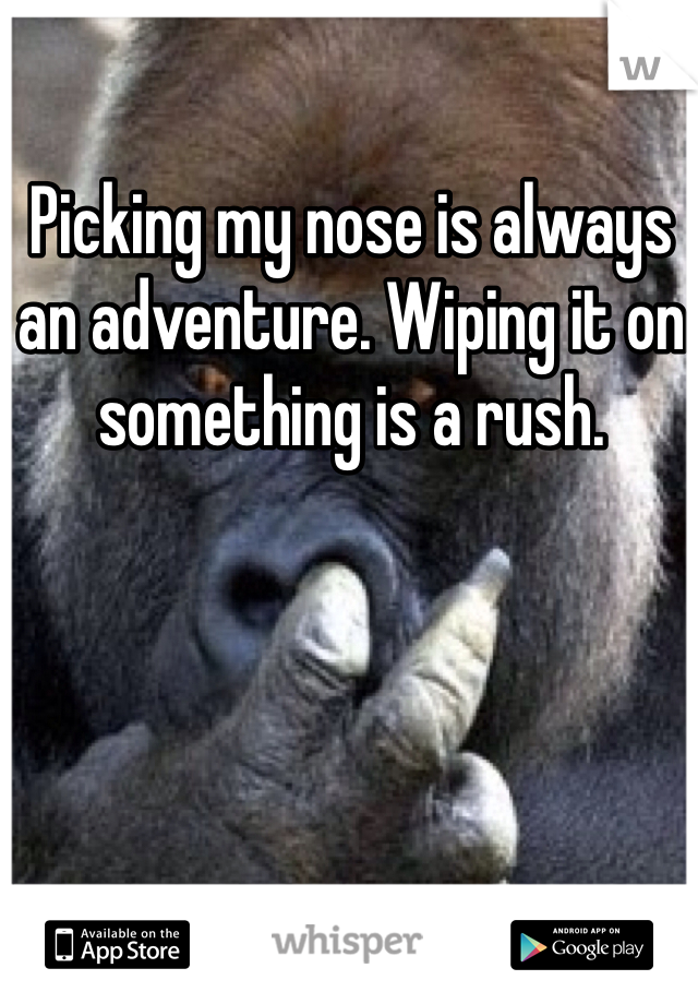 Picking my nose is always an adventure. Wiping it on something is a rush.