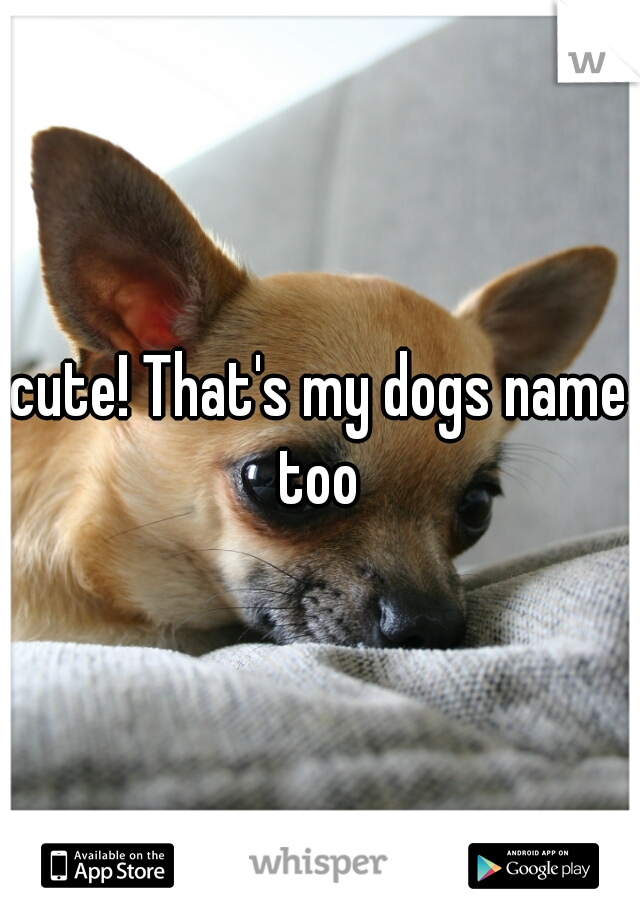 cute! That's my dogs name too