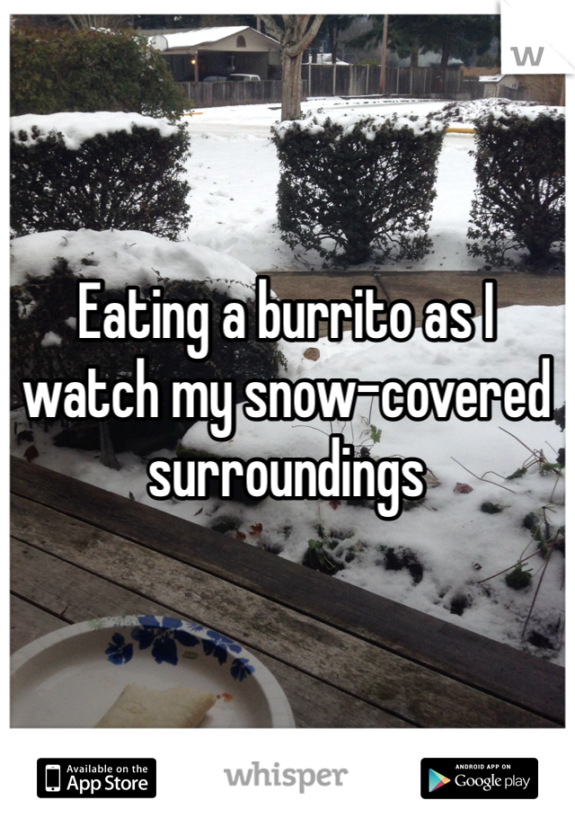Eating a burrito as I watch my snow-covered surroundings