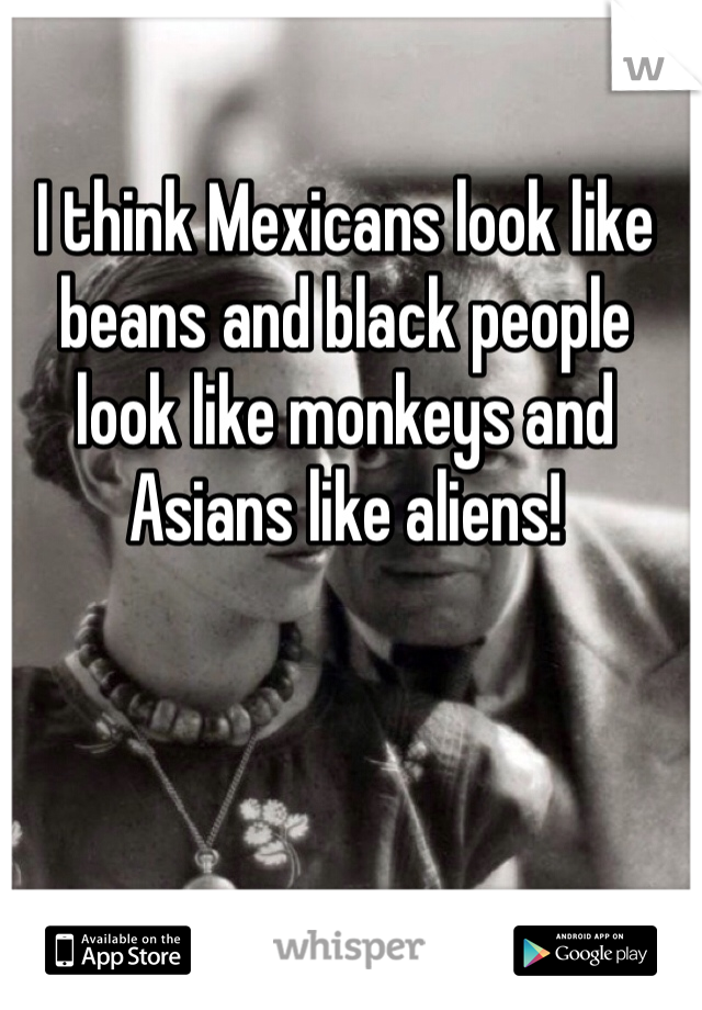 I think Mexicans look like beans and black people look like monkeys and Asians like aliens!