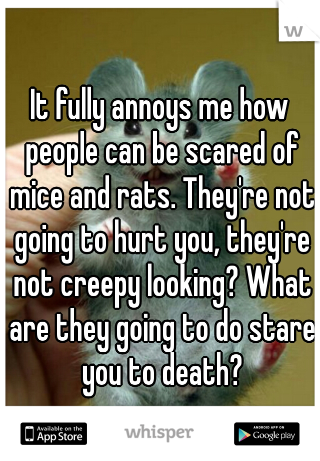 It fully annoys me how people can be scared of mice and rats. They're not going to hurt you, they're not creepy looking? What are they going to do stare you to death?