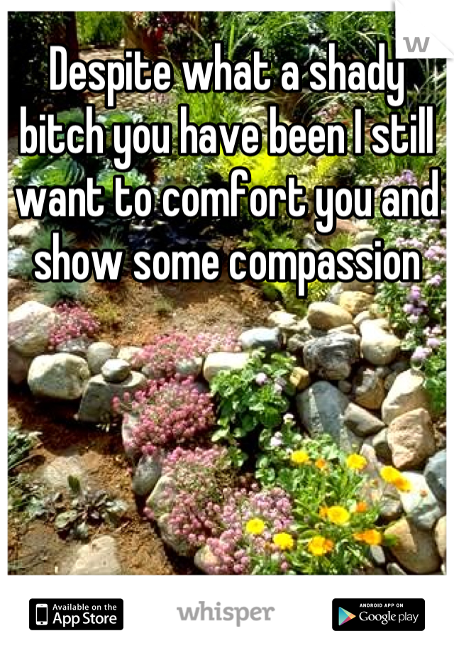 Despite what a shady bitch you have been I still want to comfort you and show some compassion
