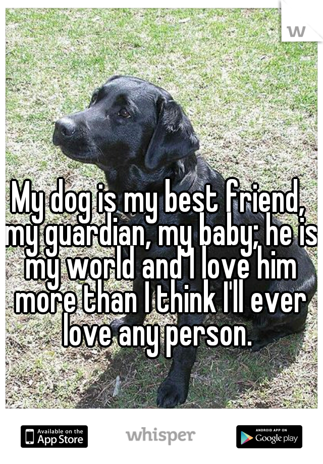 My dog is my best friend, my guardian, my baby; he is my world and I love him more than I think I'll ever love any person.