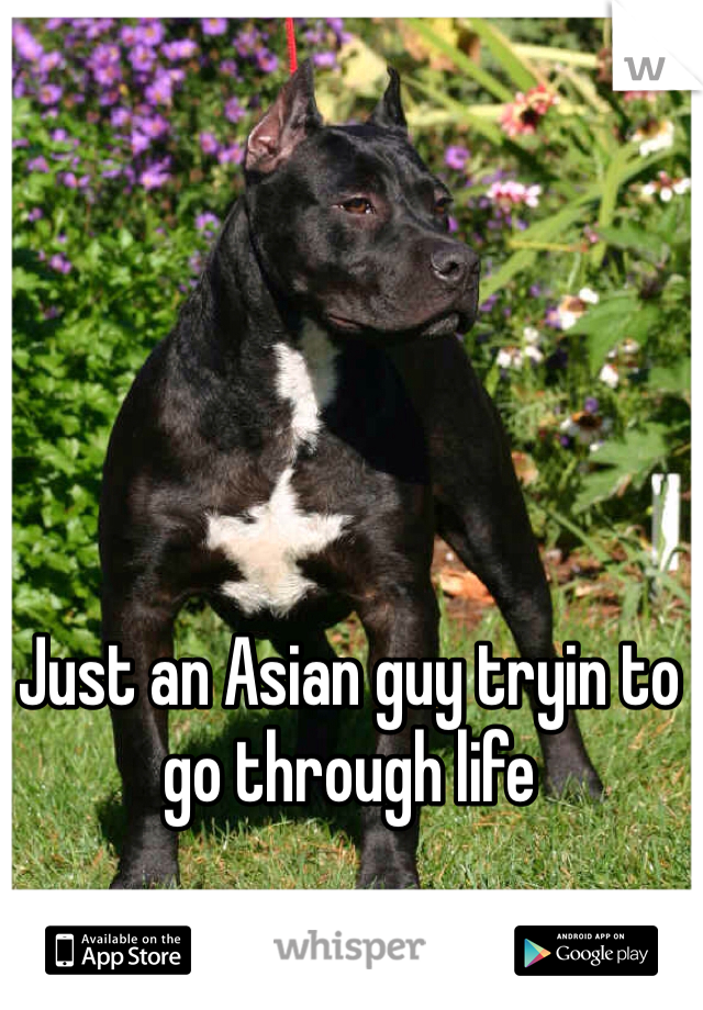 Just an Asian guy tryin to go through life