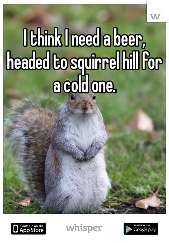 I think I need a beer, headed to squirrel hill for a cold one.