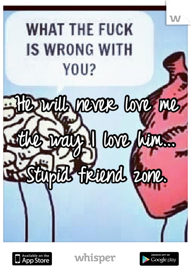 He will never love me the way I love him... Stupid friend zone.
