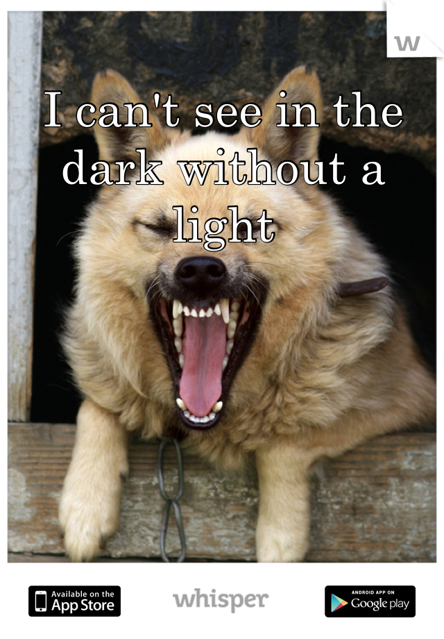 I can't see in the dark without a light