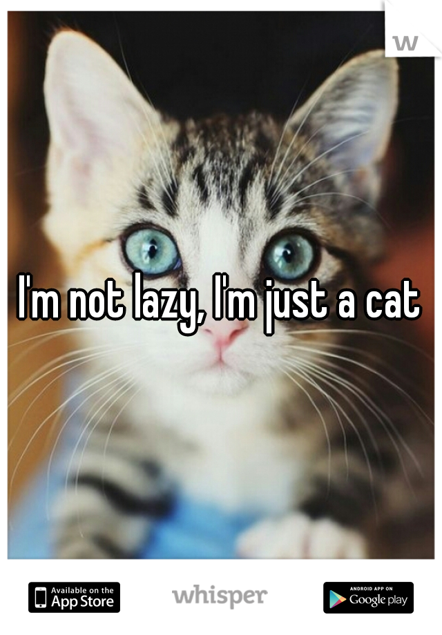 I'm not lazy, I'm just a cat