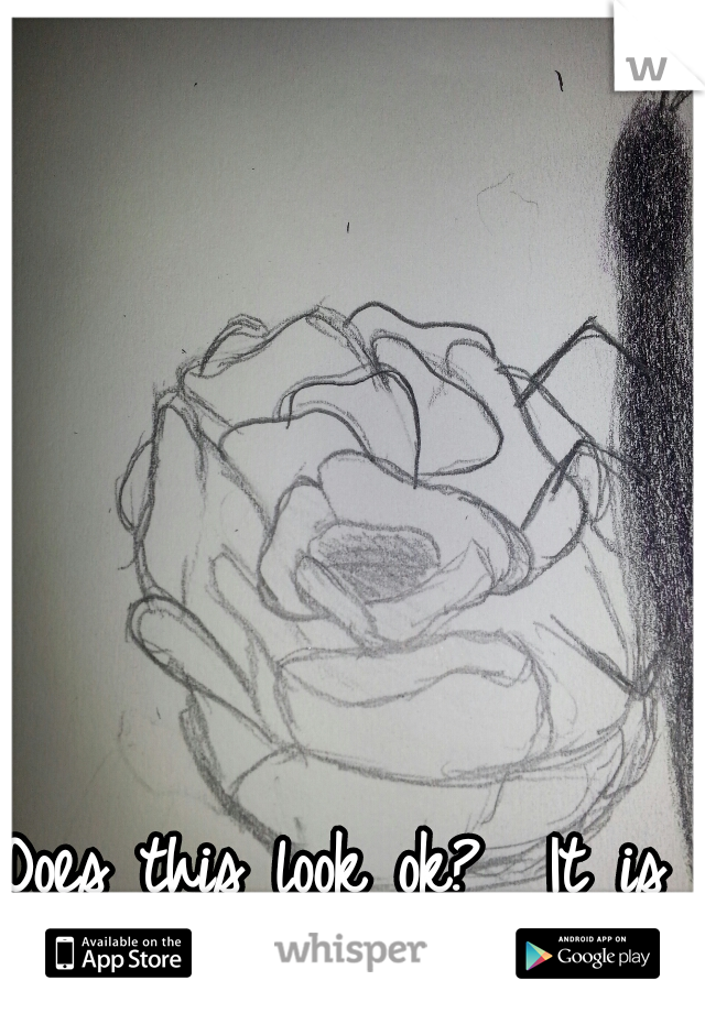 Does this look ok?  It is a rose.
