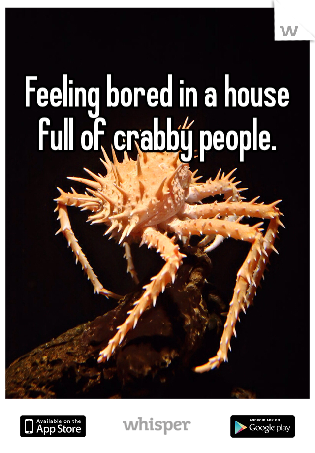Feeling bored in a house full of crabby people.