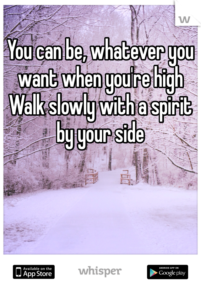 You can be, whatever you want when you're high Walk slowly with a spirit by your side