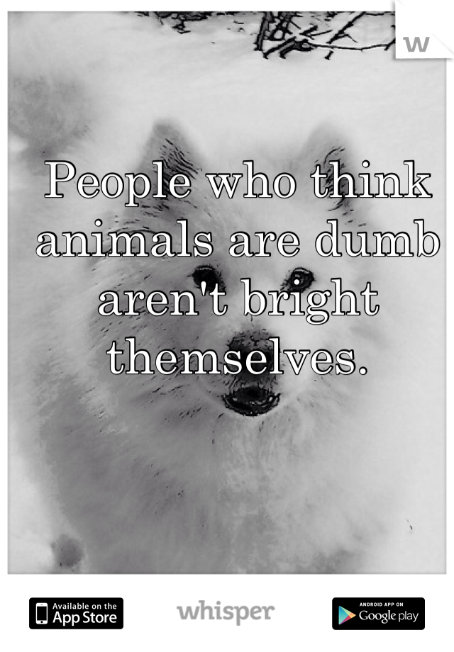 People who think animals are dumb aren't bright themselves.