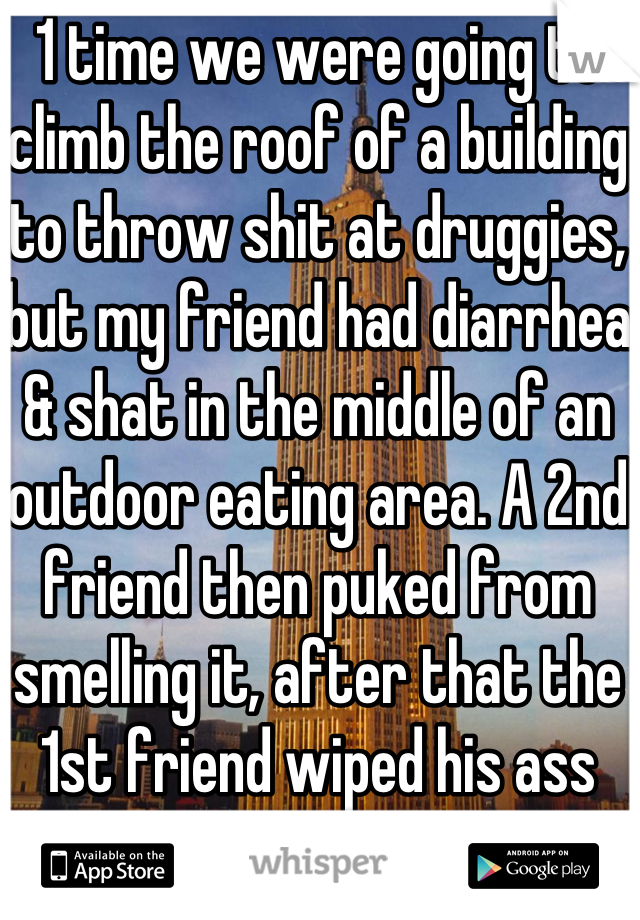 1 time we were going to climb the roof of a building to throw shit at druggies, but my friend had diarrhea & shat in the middle of an outdoor eating area. A 2nd friend then puked from smelling it, after that the 1st friend wiped his ass with a $5 bill