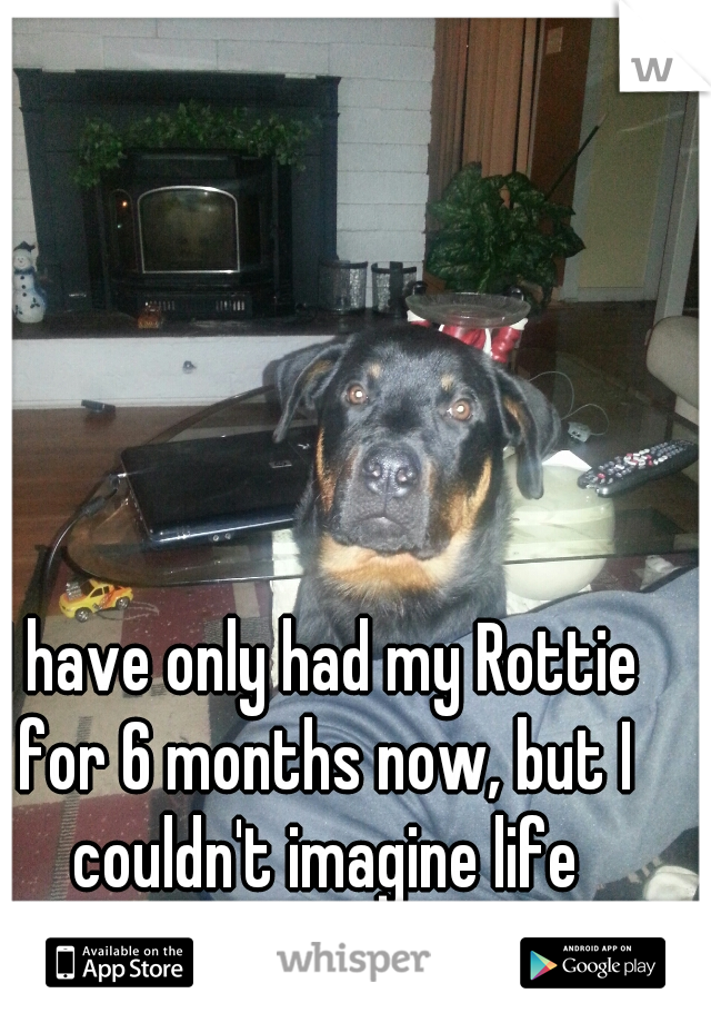 I have only had my Rottie for 6 months now, but I couldn't imagine life without him....