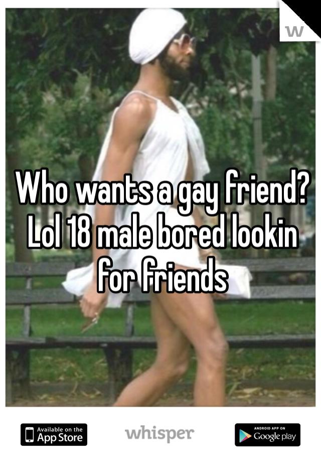Who wants a gay friend? Lol 18 male bored lookin for friends