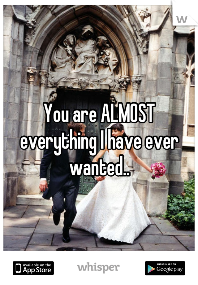 You are ALMOST everything I have ever wanted..