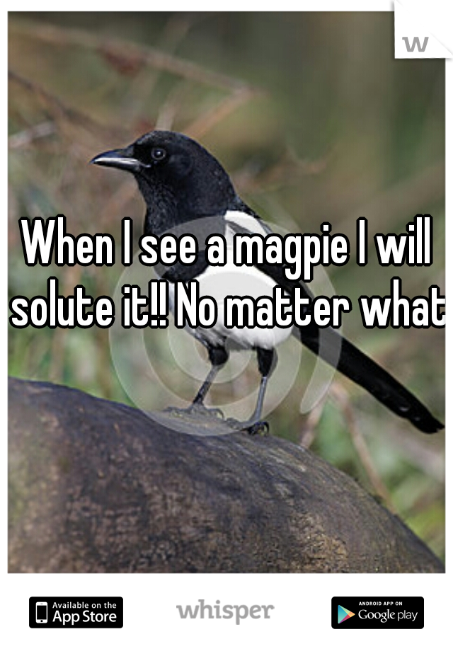 When I see a magpie I will solute it!! No matter what