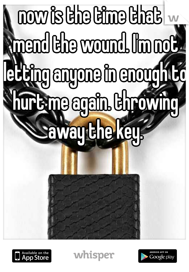now is the time that I mend the wound. I'm not letting anyone in enough to hurt me again. throwing away the key.