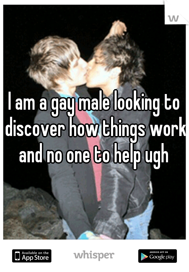I am a gay male looking to discover how things work and no one to help ugh