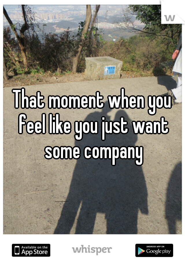 That moment when you feel like you just want some company