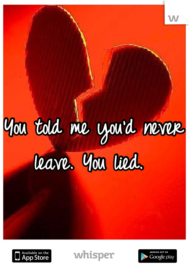 You told me you'd never leave. You lied.