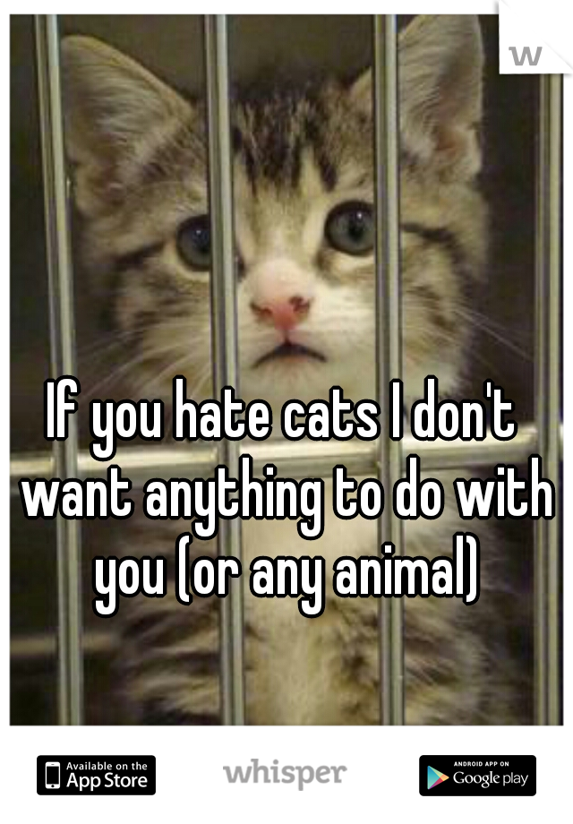If you hate cats I don't want anything to do with you (or any animal)