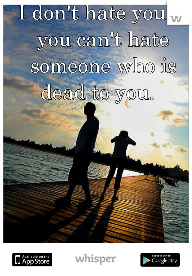 I don't hate you... you can't hate someone who is dead to you.