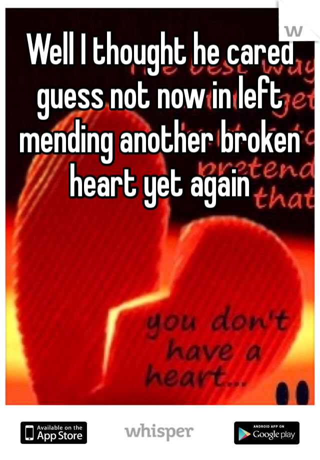 Well I thought he cared guess not now in left mending another broken heart yet again